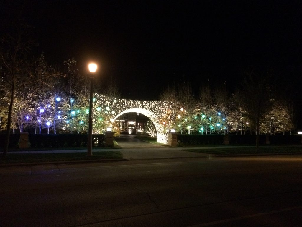 These are holiday lights in trees and an arched entrance to the driveway.