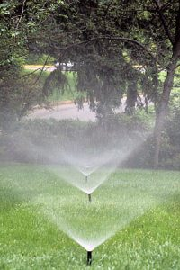 This is a line of sprinklers in an irrigation system.