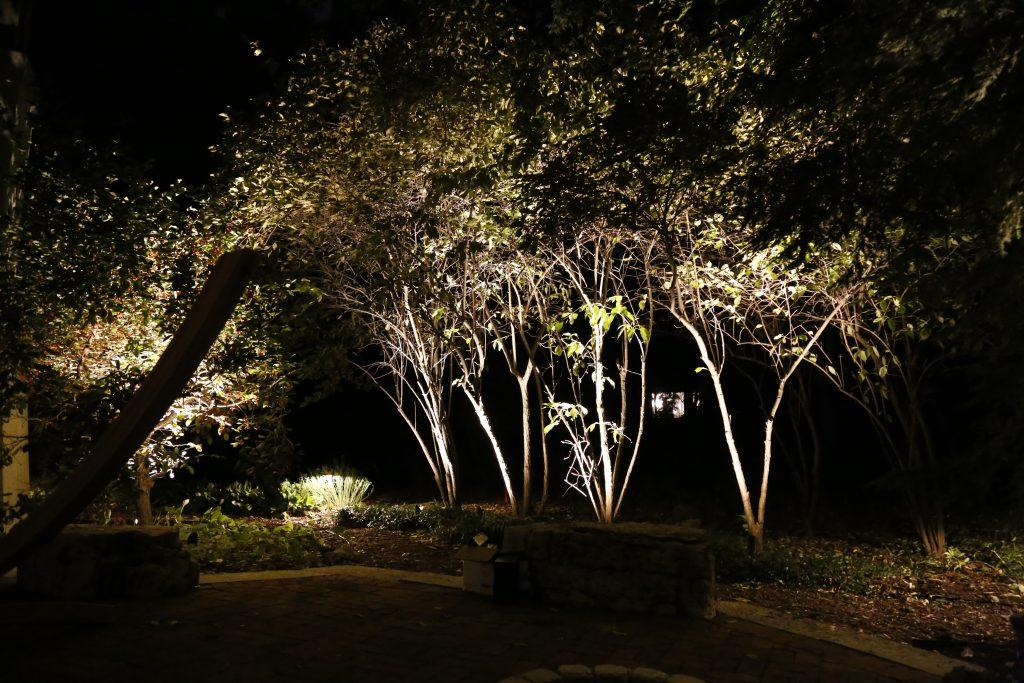 These are lights illuminating three trees.