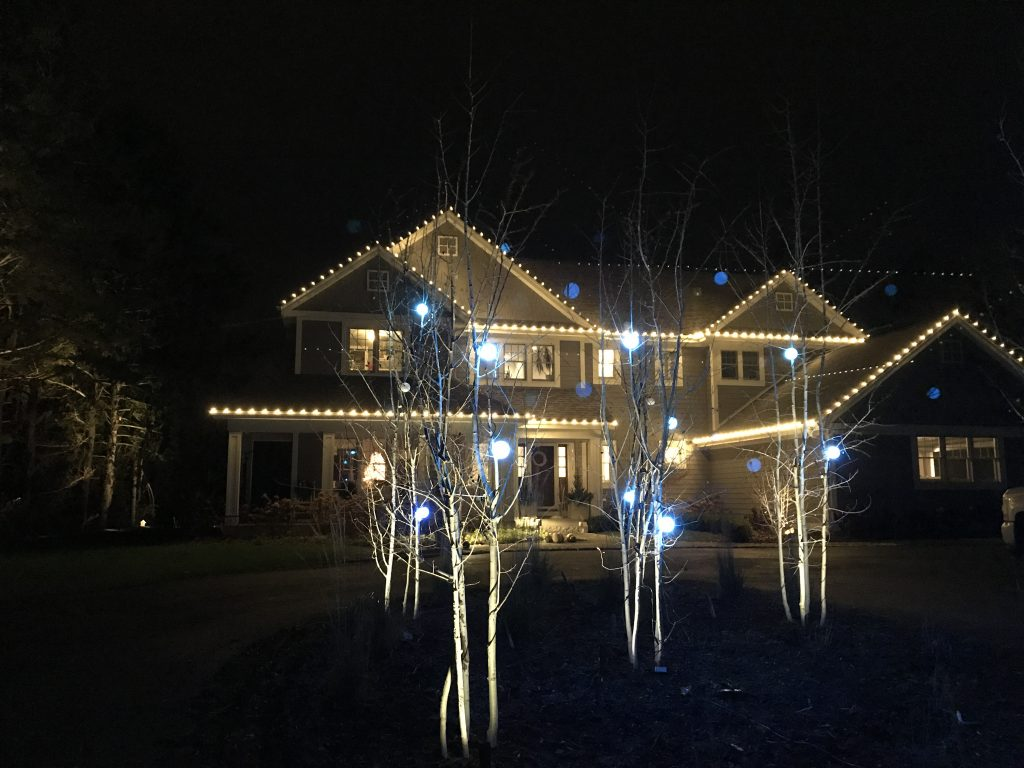 This is holiday lighting in the front yard.